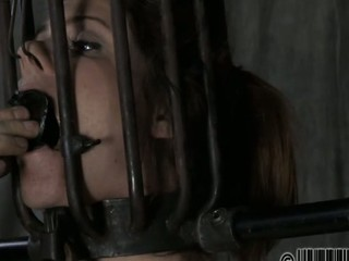 Beauty gets her nipples licked in advance of painful clamping