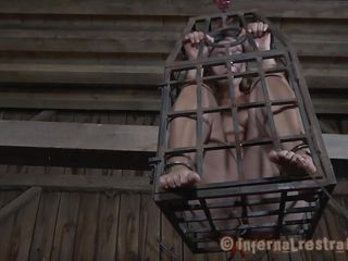 caged sex slave gives head
