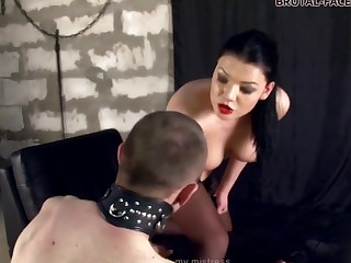 Brutal-FaceSitting Video: Mistress Stephanie